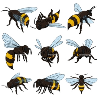 Realistic Bees Collection