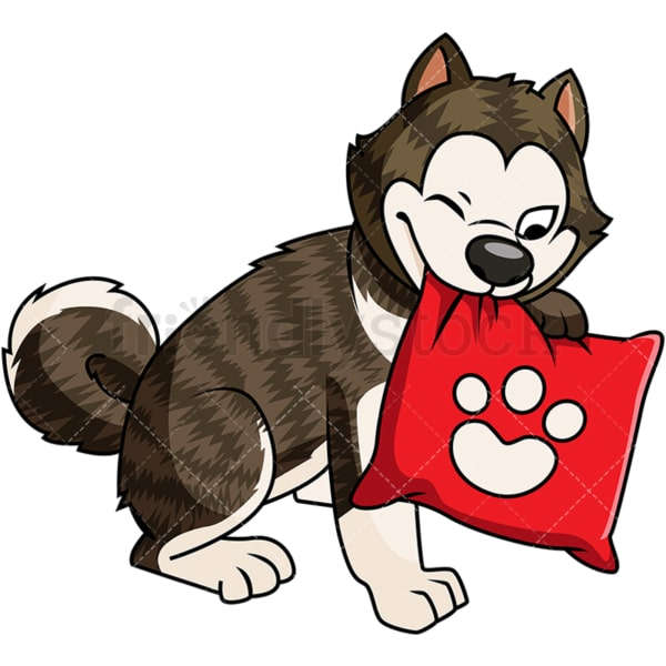 Brindle akita dog with pillow. PNG - JPG and vector EPS file formats (infinitely scalable). Image isolated on transparent background.