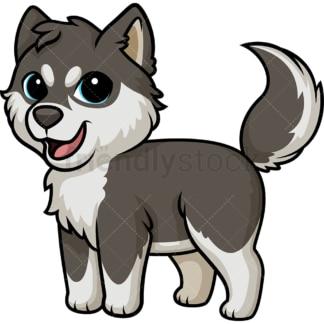 Joyful Husky