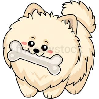 Sweet pomeranian dog chewing a big bone. PNG - JPG and vector EPS (infinitely scalable).