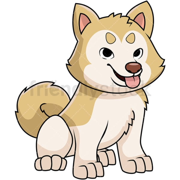 Akita puppy sticking tongue out. PNG - JPG and vector EPS file formats (infinitely scalable). Image isolated on transparent background.