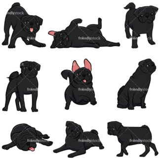 Black pug dogs. PNG - JPG and vector EPS file formats (infinitely scalable). Images isolated on transparent background.
