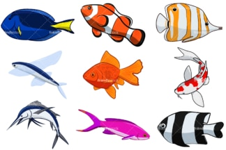 Fish cartoon. PNG - JPG and vector EPS file formats (infinitely scalable). Image isolated on transparent background.