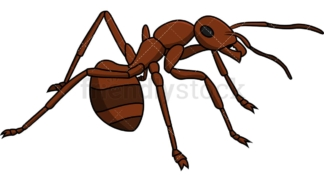 Ant on alert. PNG - JPG and vector EPS file formats (infinitely scalable). Image isolated on transparent background.