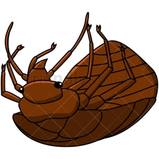 Dead bed bug. PNG - JPG and vector EPS file formats (infinitely scalable). Image isolated on transparent background.