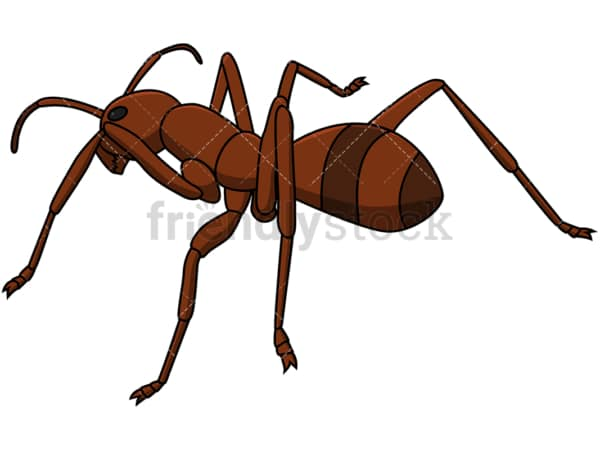 Ant back view. PNG - JPG and vector EPS file formats (infinitely scalable). Image isolated on transparent background.
