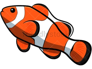 Clownfish cartoon. PNG - JPG and vector EPS file formats (infinitely scalable). Image isolated on transparent background.