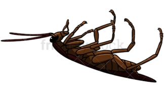 Dead cockroach side view. PNG - JPG and vector EPS file formats (infinitely scalable). Image isolated on transparent background.