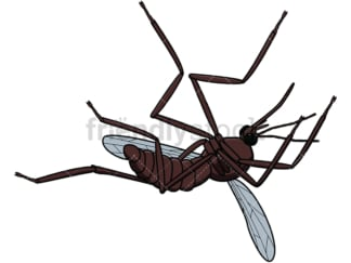 Dead mosquito . PNG - JPG and vector EPS file formats (infinitely scalable). Image isolated on transparent background.