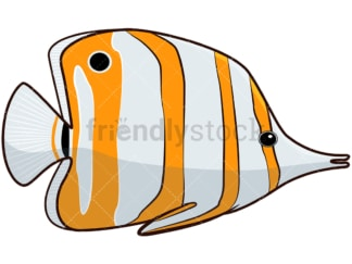 Copperband butterflyfish. PNG - JPG and vector EPS file formats (infinitely scalable). Image isolated on transparent background.