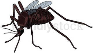 Idle mosquito. PNG - JPG and vector EPS file formats (infinitely scalable). Image isolated on transparent background.