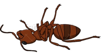 Dead ant. PNG - JPG and vector EPS file formats (infinitely scalable). Image isolated on transparent background.
