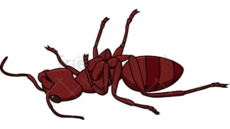 Dead red ant. PNG - JPG and vector EPS file formats (infinitely scalable). Image isolated on transparent background.