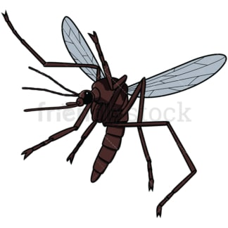 Flying mosquito. PNG - JPG and vector EPS file formats (infinitely scalable). Image isolated on transparent background.
