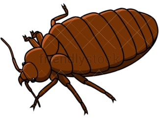 Bed bug isometric view. PNG - JPG and vector EPS file formats (infinitely scalable). Image isolated on transparent background.