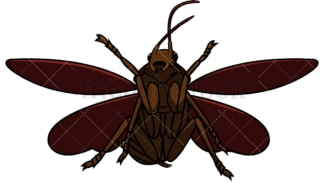 Flying cockroach. PNG - JPG and vector EPS file formats (infinitely scalable). Image isolated on transparent background.