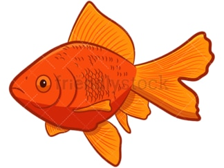 Goldfish cartoon. PNG - JPG and vector EPS file formats (infinitely scalable). Image isolated on transparent background.