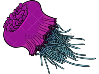 Cephea jellyfish. PNG - JPG and vector EPS file formats (infinitely scalable). Image isolated on transparent background.
