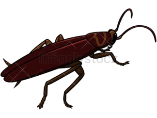 Alive cockroach. PNG - JPG and vector EPS file formats (infinitely scalable). Image isolated on transparent background.