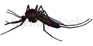 Mosquito side view. PNG - JPG and vector EPS file formats (infinitely scalable). Image isolated on transparent background.
