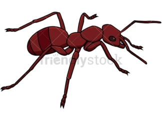 Red ant isometric view. PNG - JPG and vector EPS file formats (infinitely scalable). Image isolated on transparent background.