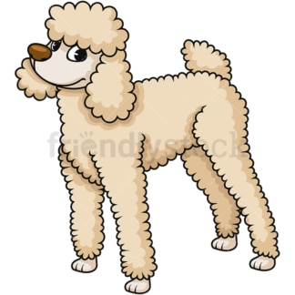 Pretty standard poodle. PNG - JPG and vector EPS (infinitely scalable). Image isolated on transparent background.