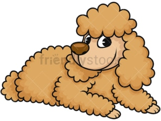Miniature poodle sitting down. PNG - JPG and vector EPS (infinitely scalable). Image isolated on transparent background.