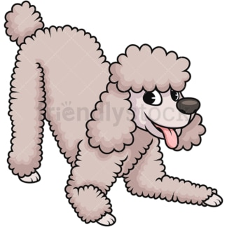 Happy cream poodle dog. PNG - JPG and vector EPS (infinitely scalable). Image isolated on transparent background.