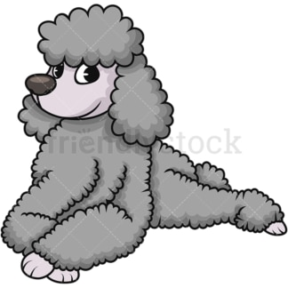 Standard poodle lying down. PNG - JPG and vector EPS (infinitely scalable). Image isolated on transparent background.