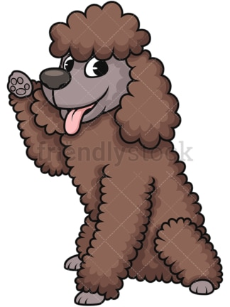 Playful miniature poodle. PNG - JPG and vector EPS (infinitely scalable). Image isolated on transparent background.