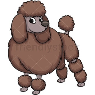 Stylish groomed poodle. PNG - JPG and vector EPS (infinitely scalable). Image isolated on transparent background.