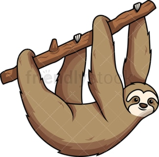 Sloth hanging from tree branch. PNG - JPG and vector EPS (infinitely scalable). Image isolated on transparent background.