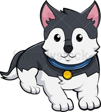 Adorable husky puppy. PNG - JPG and vector EPS (infinitely scalable). Image isolated on transparent background.