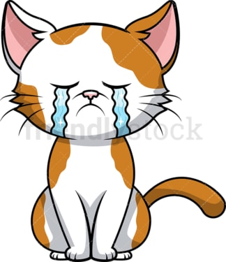 Crying cat. PNG - JPG and vector EPS (infinitely scalable). Image isolated on transparent background.