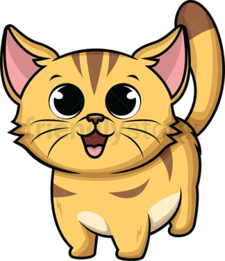 Adorable baby kitten. PNG - JPG and vector EPS (infinitely scalable). Image isolated on transparent background.