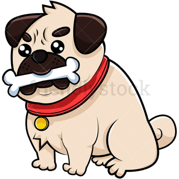 Pug dog with bone. PNG - JPG and vector EPS (infinitely scalable). Image isolated on transparent background.