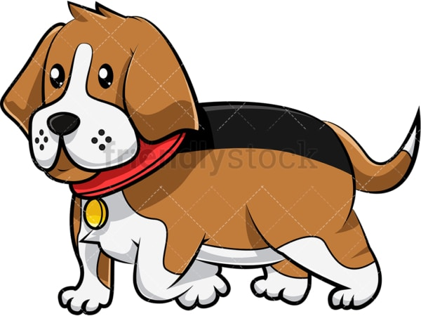 Beagle dog walking. PNG - JPG and vector EPS (infinitely scalable). Image isolated on transparent background.