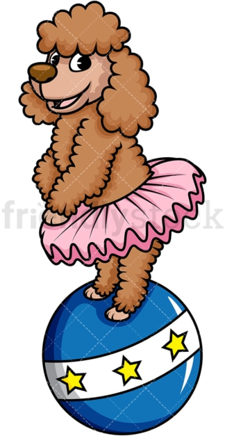 Circus dog ballerina on ball. PNG - JPG and vector EPS (infinitely scalable). Image isolated on transparent background.