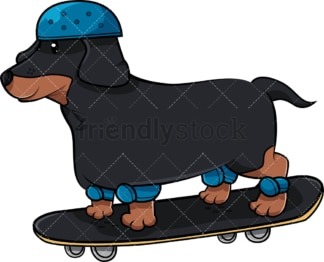 Dachshund dog on skateboard. PNG - JPG and vector EPS (infinitely scalable). Image isolated on transparent background.