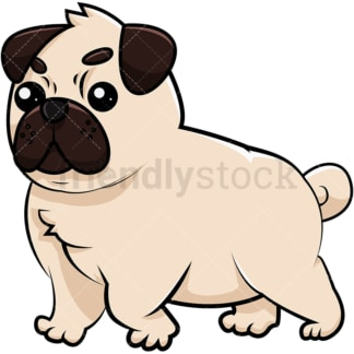 Adorable chubby pug. PNG - JPG and vector EPS (infinitely scalable). Image isolated on transparent background.