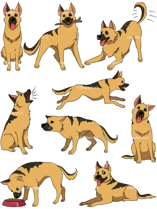 German shepherd. PNG - JPG and vector EPS file formats (infinitely scalable). Image isolated on transparent background.