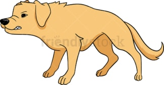 Angry and aggressive golden retriever dog. PNG - JPG and vector EPS (infinitely scalable).