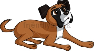 Intrigued boxer dog. PNG - JPG and vector EPS (infinitely scalable). Image isolated on transparent background.