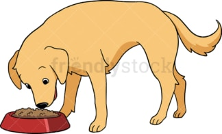Golden retriever dog playing fetch. PNG - JPG and vector EPS (infinitely scalable).