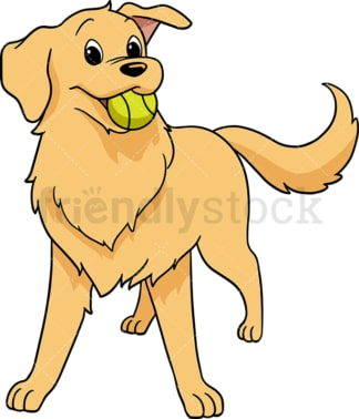 Playful golden retriever. PNG - JPG and vector EPS (infinitely scalable). Image isolated on transparent background.
