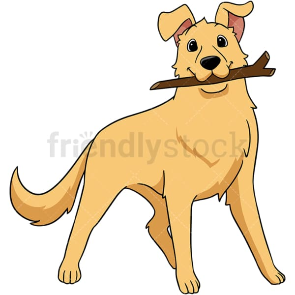 Golden retriever dog lying on the floor. PNG - JPG and vector EPS (infinitely scalable).