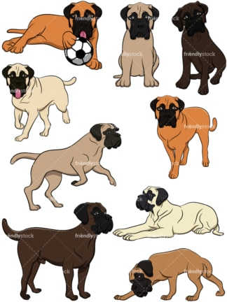 Bullmastiff dogs. PNG - JPG and vector EPS file formats (infinitely scalable). Image isolated on transparent background.