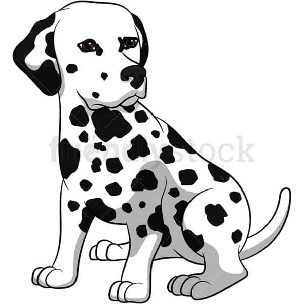 Cute dalmatian dog. PNG - JPG and vector EPS (infinitely scalable). Image isolated on transparent background.