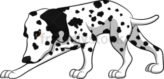 Sniffing dalmatian dog. PNG - JPG and vector EPS (infinitely scalable). Image isolated on transparent background.
