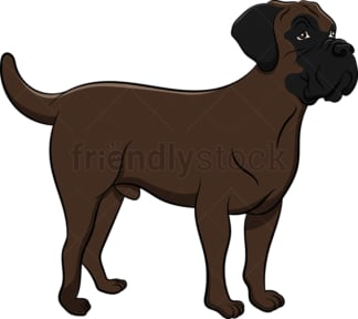 Brindle bullmastiff dog. PNG - JPG and vector EPS (infinitely scalable). Image isolated on transparent background.